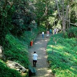 parque-da-catacumba-2-250
